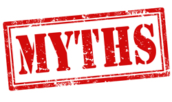Image result for bed bug myths